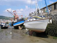 Dried out at Lyme Regis