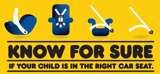 Image result for car seat check up