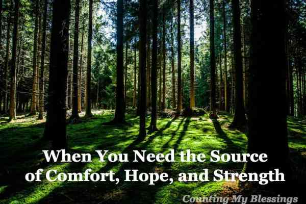 When life is hard and you need the source of comfort, hope, and strength . . . snuggle in, be assured you are loved and cared for.