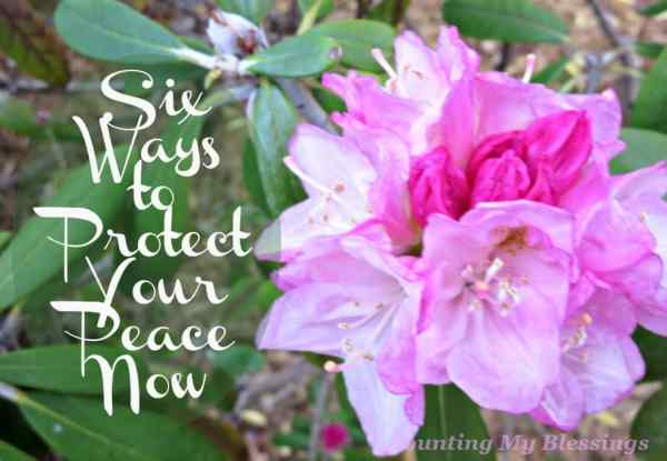 Are you tired of the chaos? Are you ready to be done with stress and anxiety? Here are six ways to protect your personal peace...