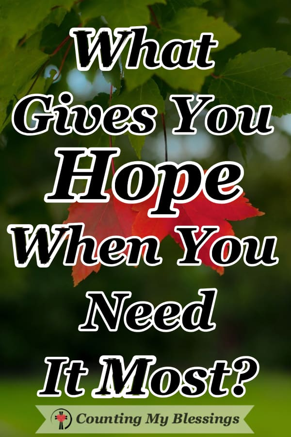 "When I need hope, I turn to God's promises. I decided to ask some friends ""what gives you hope when you need it most."" Here are their answers... #Hope #Friends #Blessings #PromisesofGod"