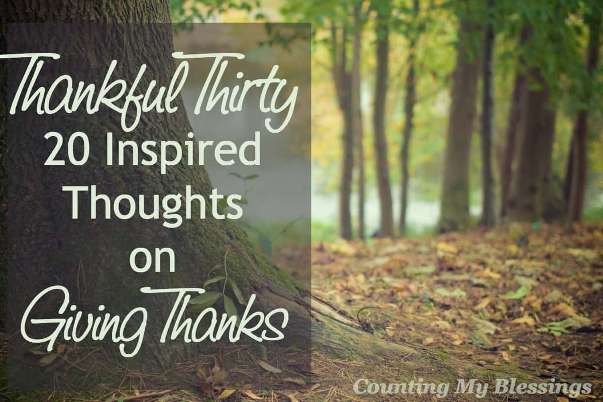 Thankful Thirty 20 Inspired Thoughts On Giving Thanks Counting