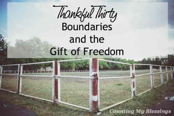 Do you like boundaries? Some people push against them. Others consider them safe. And safe inside the boundaries is the joy of complete freedom.