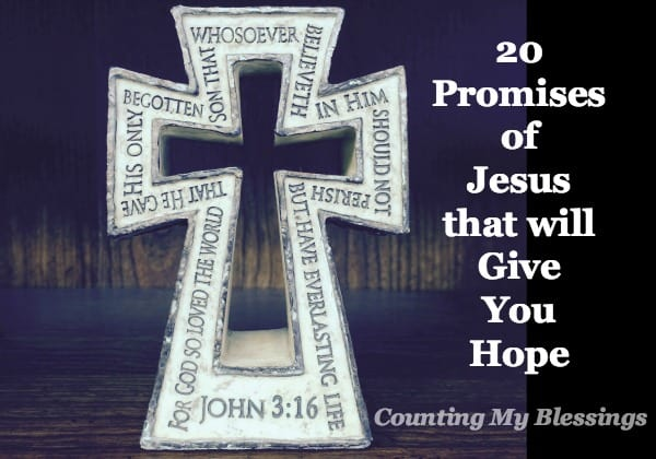 Promises of Jesus you can count on in this nothing new under the sun world. Because under the Son, everything is new and full of life.