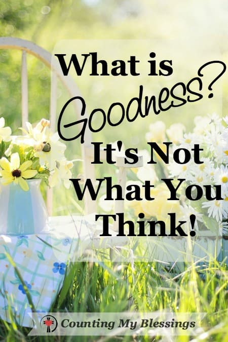 The Faith Project is taking a close look at goodness. It is not the same as obedience. So, what exactly is goodness? You might be surprised.