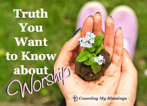 True worship confesses God - all His power and glory in everything we do and say. The highest form of worship is to trust and obey God and His Word.