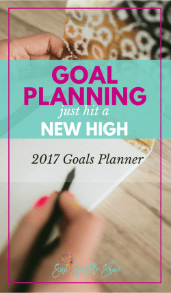 Goal Planning Just Hit a New High - 2017 Goals Planner by Marva Smith