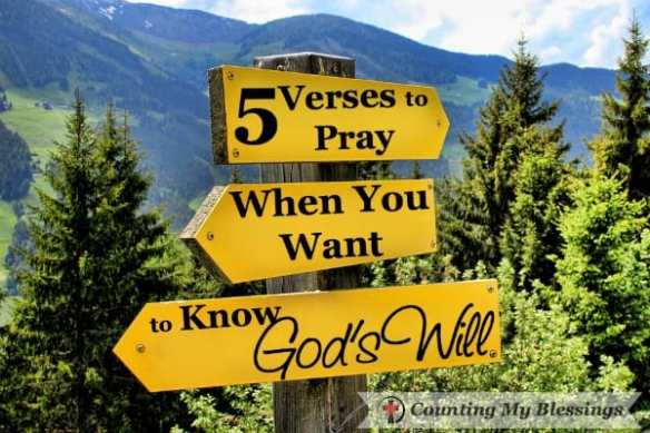 I don't think I'm the only one who struggles to know the specifics of God's will. So I searched for verses to pray to ask God for guidance and direction.