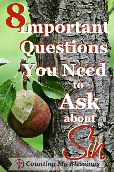 8 Important Questions You Need to Ask about Sin - Counting My Blessings
