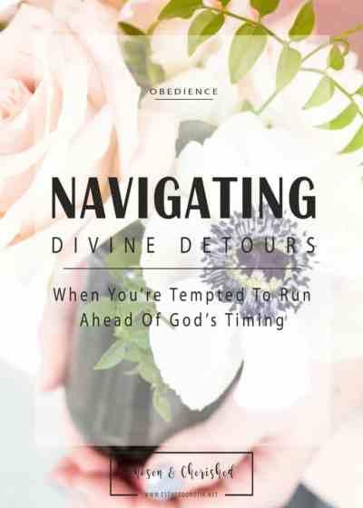 Navigating Divine Detours by Esther Dorotik
