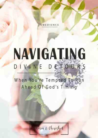 Navigating Divine Detours by Esther Dorotik
