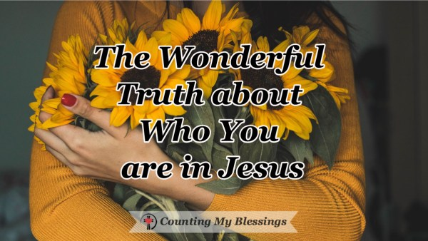 When your mind wanders into self-contempt, I need to stop and focus on who you are in Jesus ... a wonderful truth that changes everything. #BlessingCounter #Faith #Scripture #Jesus