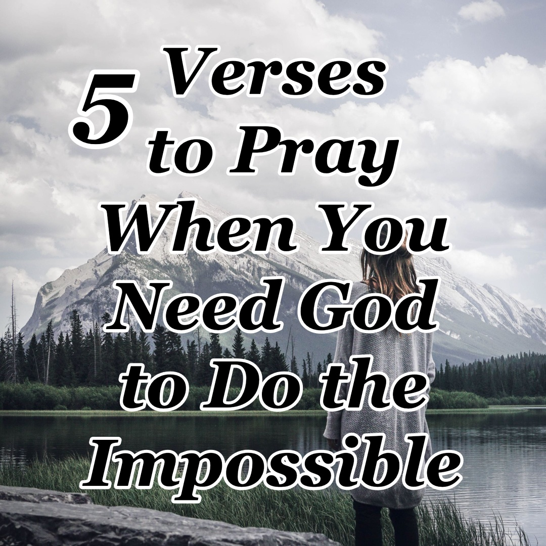 Gods Plan For You: Receiving Your Blessings in Difficult Times