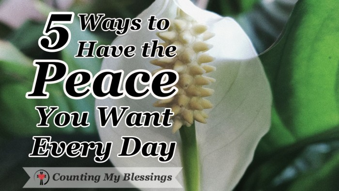 It is impossible to experience God's peace when we're reliving yesterday or pre-living tomorrow. Here are 5 ways to have the peace you want every day. #InnerPeace #BibleStudy #Faith