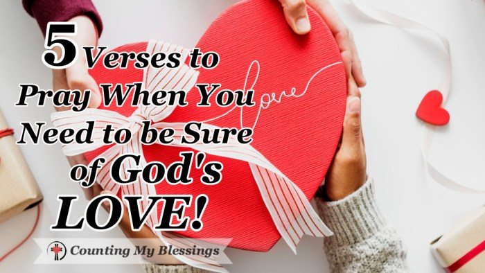 God's love is more than enough when life is hard and people let you down. Here are 5 verses to pray when you need to be sure of God's love. #GodisLove #GodLovesYou #Prayer #Bible #Faith