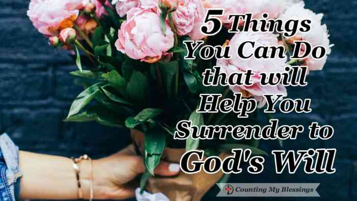 """Thy will be done."" One of the hardest prayers in the Bible. Surrender to God's will begins with faith in Jesus and living each day one moment at a time. #BlessingBloggers #CountingMyBlessing #God'sWill"