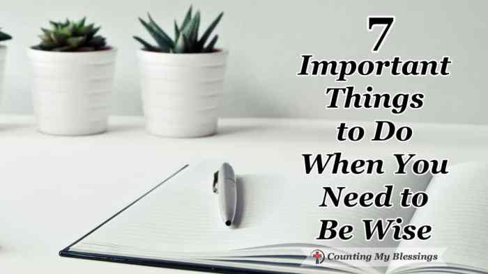 7 Important Things to Do When You Need to Be Wise - You want to know the wise thing to do and do it. But you also know you've got some growin' to do ... things to do when you need to be wise. #BibleStudy #BeWise #Faith #SeekGodFirst #ChristianBlogger #CountingMyBlessings