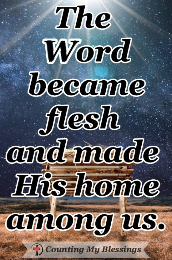 """Jesus told us a lot about who He is in comments that begin, """"I AM."""" You and I can trust that Jesus was and is who He says He is - the Great I AM! #Jesus #Christmas #Faith #Hope #WWGGG #CountingMyBlessings"""