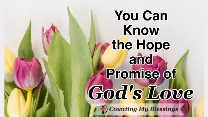 The promise of God's love - His undeserved patient love and forgiveness flattens me. I'd love to tell you how I believe you can experience this blessing too. #God'sLove #Faith #Patience #Hope #Forgiveness #BibleStudy #WWGGG #CountingMyBlessings