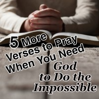 5 More Verses to Pray When You Need God to Do the Impossible