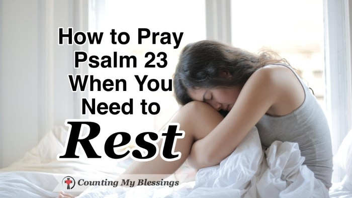 How you can pray Psalm 23 and learn to rest in God's provision and care, let go of anxiety and worry, and get the rest you desperately need. #Prayer #Psalm23 #CountingMyBlessings #WWGGG