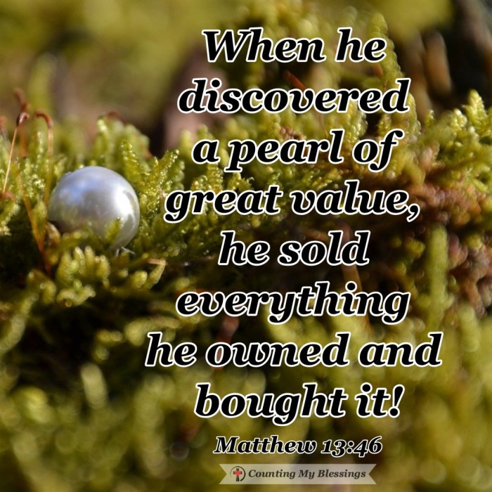 Jesus told His followers what to treasure—to know the treasure of God's love remembering it's possible because they are precious and priceless to Him. #Faith #God'sLove #Jesus'Treasure #SEEKfirst #CountingMyBlessings #BlessingBloggers