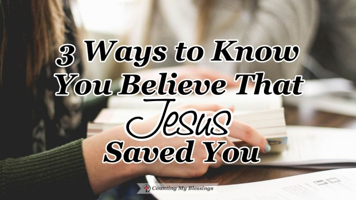 Three verses in the Book of John define what it means to believe that Jesus saved you. John 3:3, John 3:6, and John 3:16. Learn more here... #FaithinJesus #BibleStudy #CountingmyBlessings #BlessingBloggers #WWGGG