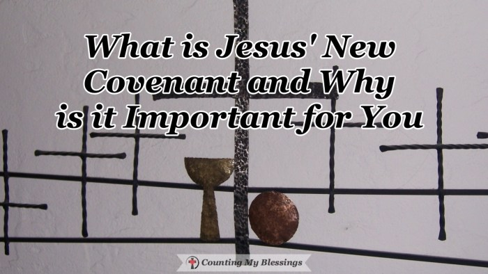 Jesus said that He came to give people a New Covenant but what does that mean and what difference does it make for people who trust in God? #FaithinGod #Jesus #BibleStudy #Blessings