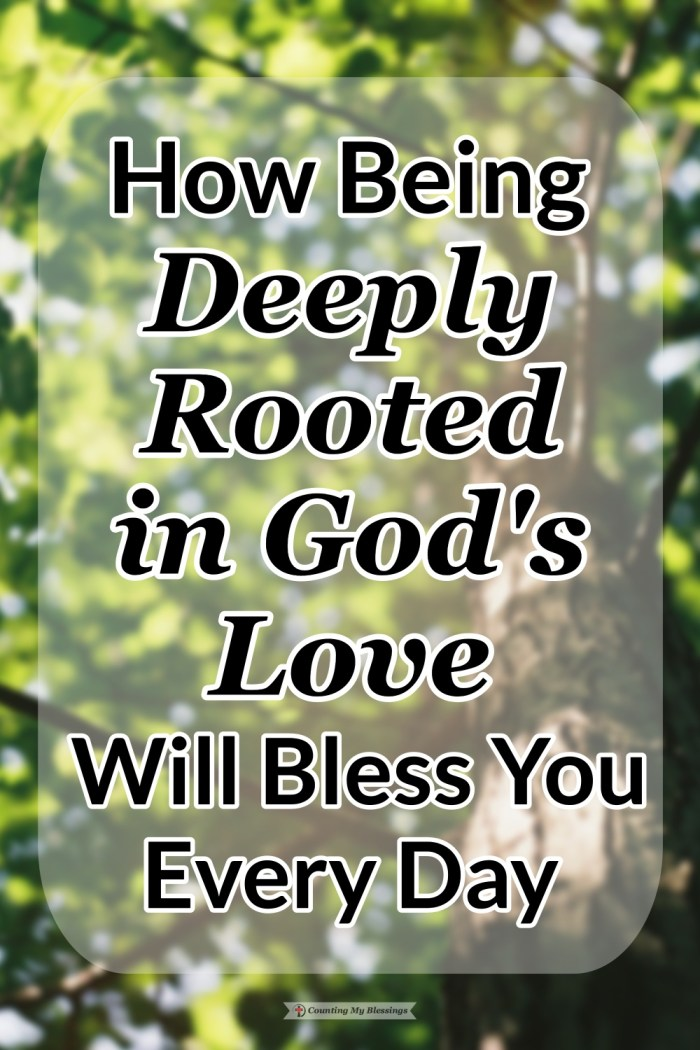 The Bible says that when you and I are deeply rooted in God's love we will experience a fullness of life and power from God. That's a blessing to celebrate. #Godslove #PowerofGod #Blessings #Faith