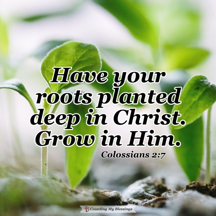 Why it's important to know the basics of what you believe and to know how to take those truths, apply them, and grow and live your faith. #Faith #BibleStudy #GrowinFaith #Blessings