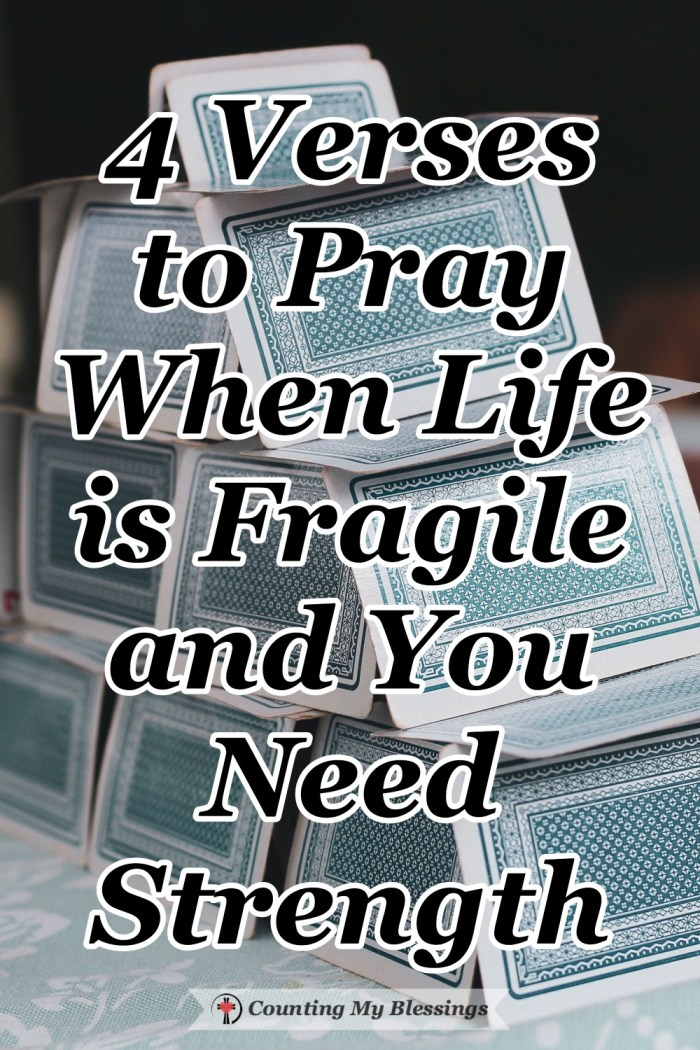 Many of us don't understand what's going on . . . we feel fragile and we know we need strength to face each day with hope and courage. Let's pray! #BibleVerses #VersestoPray #Strength #Blessings