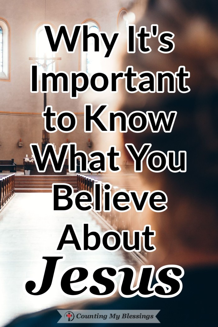 What do you believe about Jesus? Who do you say Jesus is? There is nothing more important in your life than to know what you believe about Jesus. #Jesus #Faith #BibleStudy #Hebrews #Blessings