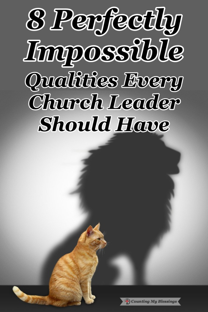 We can be quick to judge our church leaders and hold them to perfectly impossible standards . . . is that what God intended for those who want to serve Him? #Pastors #ChurchLeadership #Blessings