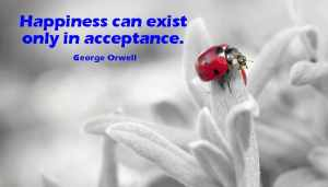 Happiness Can Exist only in acceptance