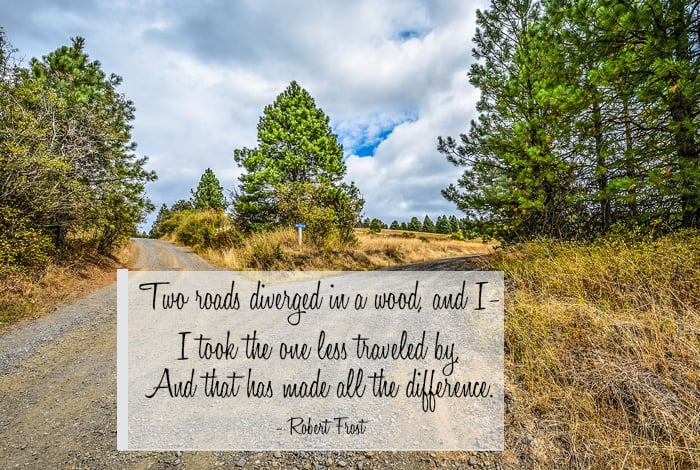 Two roads diverged in a wood, and I— I took the one less traveled by, And that has made all the difference. - Robert Frost