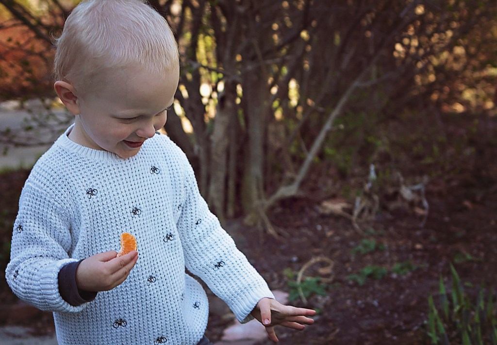 healthy eating tips I learned from my toddler