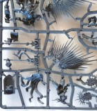 Warhammer Age of Sigmar - Stormcast Eternal Prosecutor wings and Lord-Relictor cloack on sprue