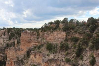 Grand Canyon National Parc - La végétation s'accroche aux parois abruptes