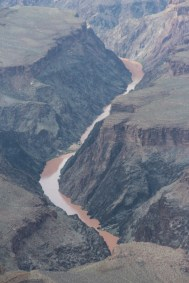La rivière Colorado au fond du Canyon