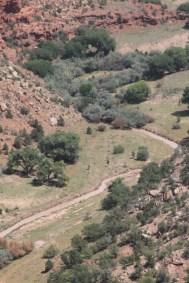 Le Canyon de Chelly :  méandres du Chinle Wash
