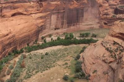 Le fond verdoyant du canyon