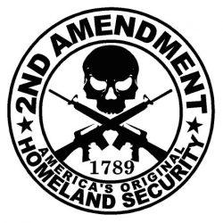 Gun Rights decal