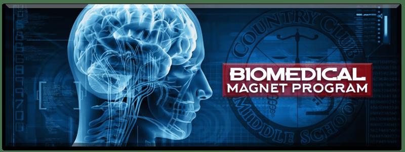 biomedical magnet