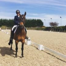Horse_riding_show_training