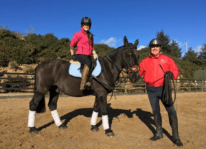 Horse Riding Lessons Wicklow Dublin