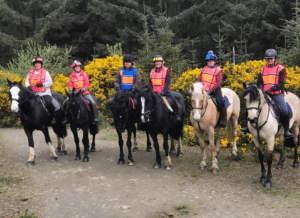 Horse back trekking county wicklow dublin