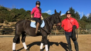 Horse Riding Lessons Dublin and Wicklow