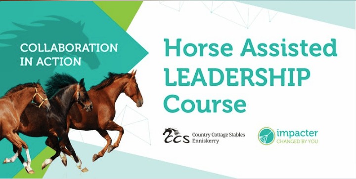 Horse-assisted LEADERSHIP training – Open day