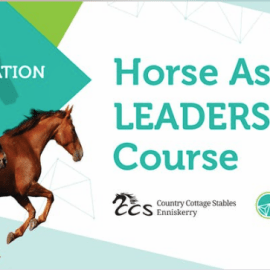 Horse Assisted Leadership Course