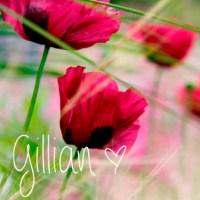 Poppies & Grass Gill